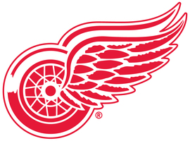 Detroit Red Wings Charitable Donations
